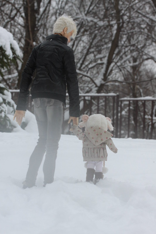 The Walk in Snow 1