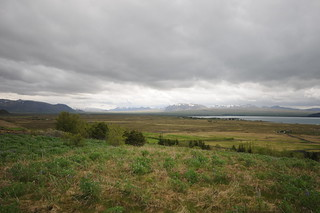 icelandic landscape in summer with snow covered mountains in distance