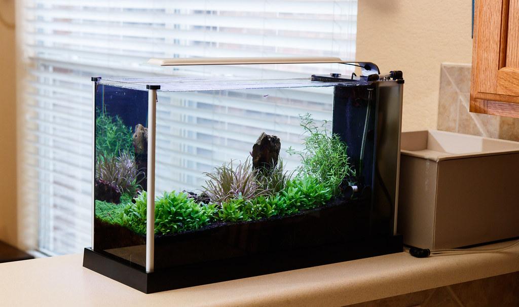 19 Litre Fishtank With Pump Comfortable Feel Fish & Aquarium Aquariums