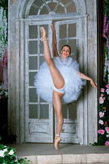 <span onclick=&quot;ImageToolBar('38551988230', 'studio', '');&quot;><img src=&quot;/files/pics/share-bright.png&quot; style=&quot;border:0;height:17px;&quot; /></span> Ballerina - storm of femininity and sexuality