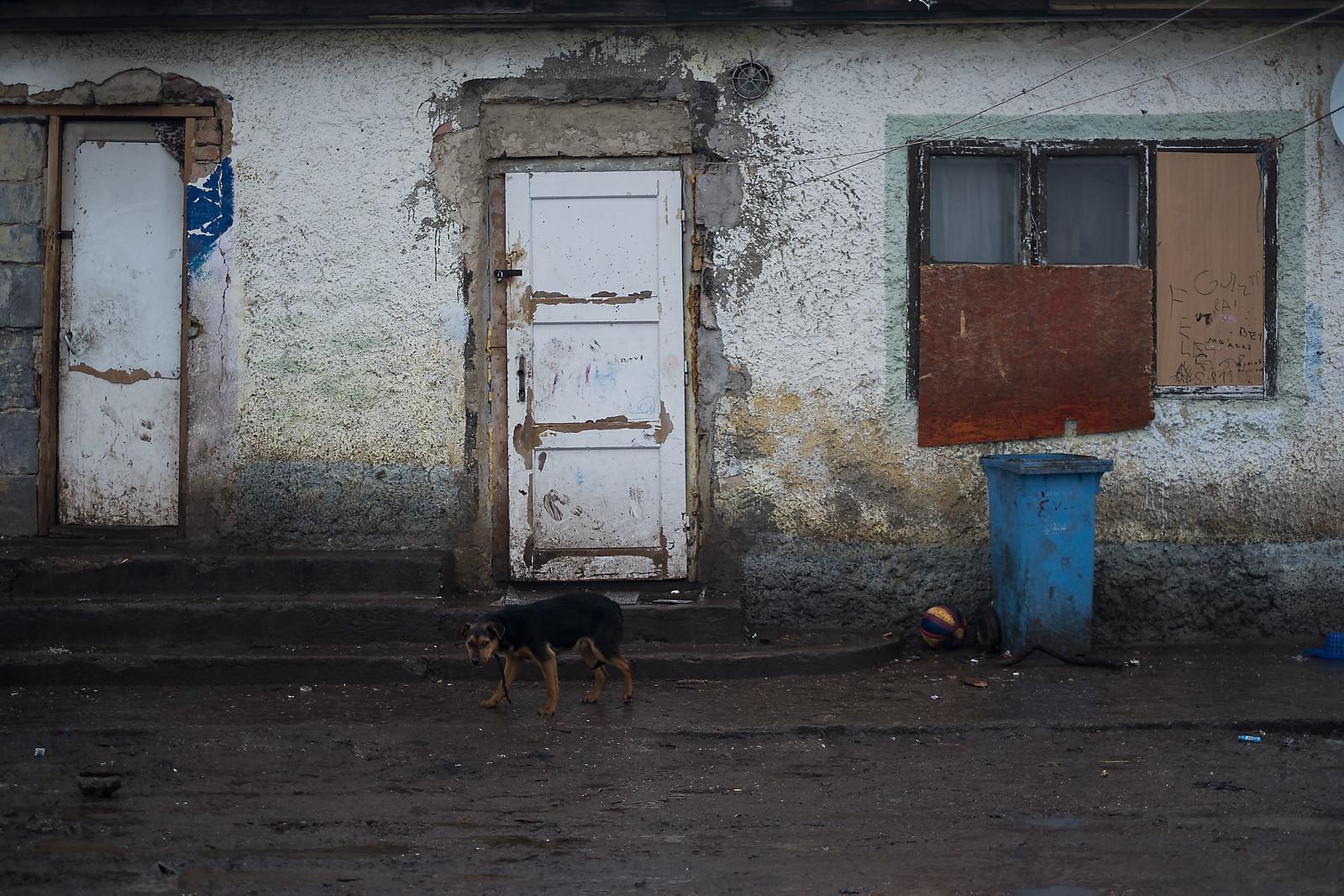 Romos, de az udvart próbálják tisztán tartani ennél a háznál Sajókazán | Fotó: Magócsi Márton