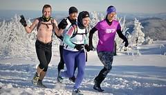 Tělesné somatotypy a jejich predispozice ke sportu a běhání