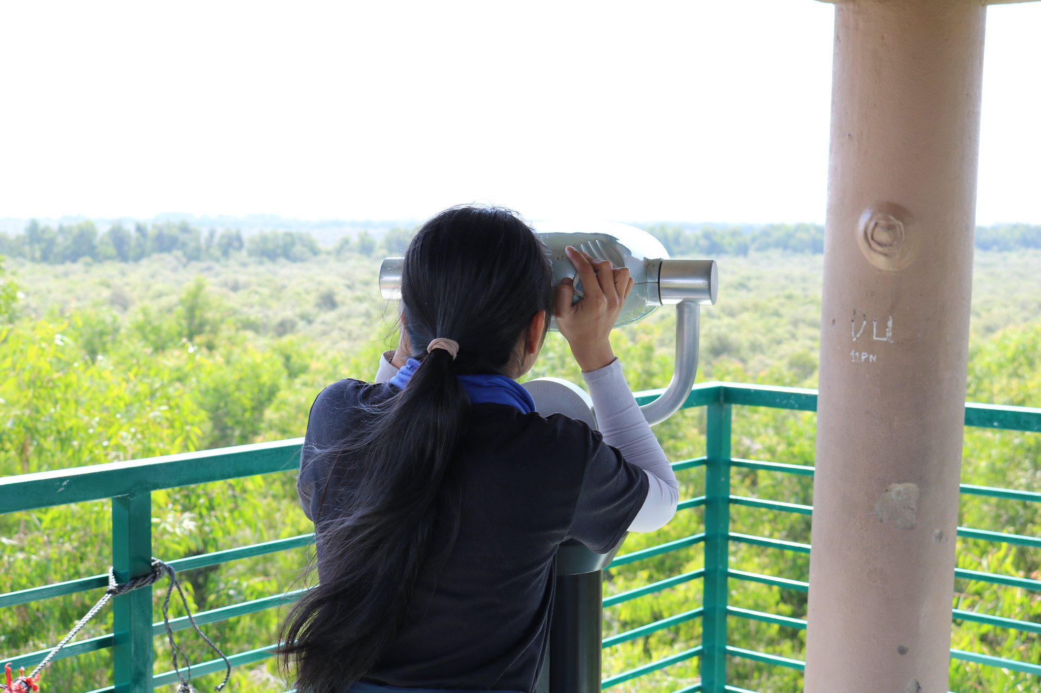Từ Đài quan sát
