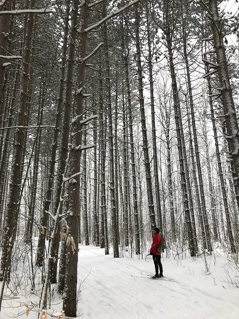 Ottawa XC ski day for me and Mark