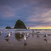 Cannon Beach by YL Jin
