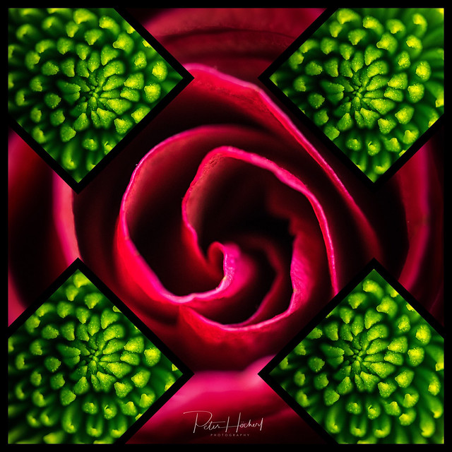 green - red