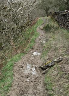 20170330-75_Muddy Path - Horcum Slack