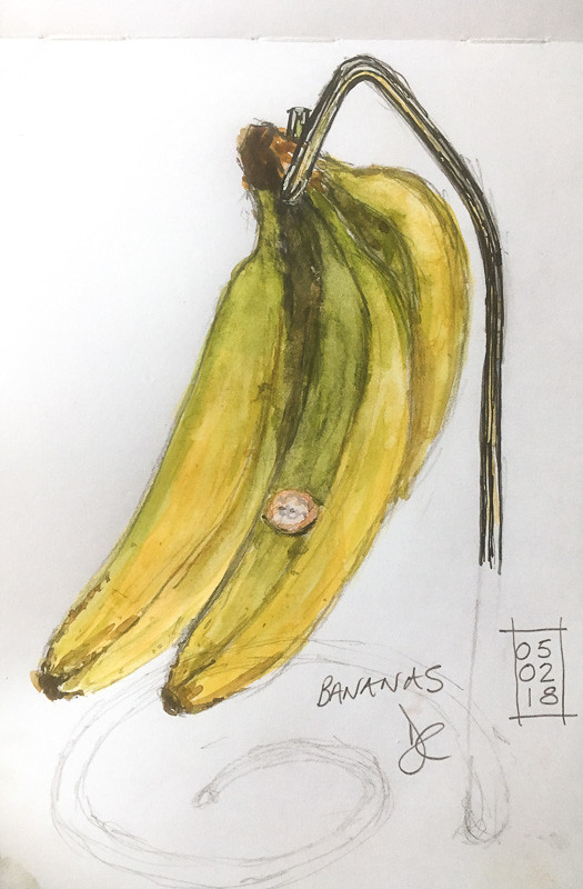 Bananas today