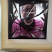 The Radical Eye : Modernist Photography exhibition