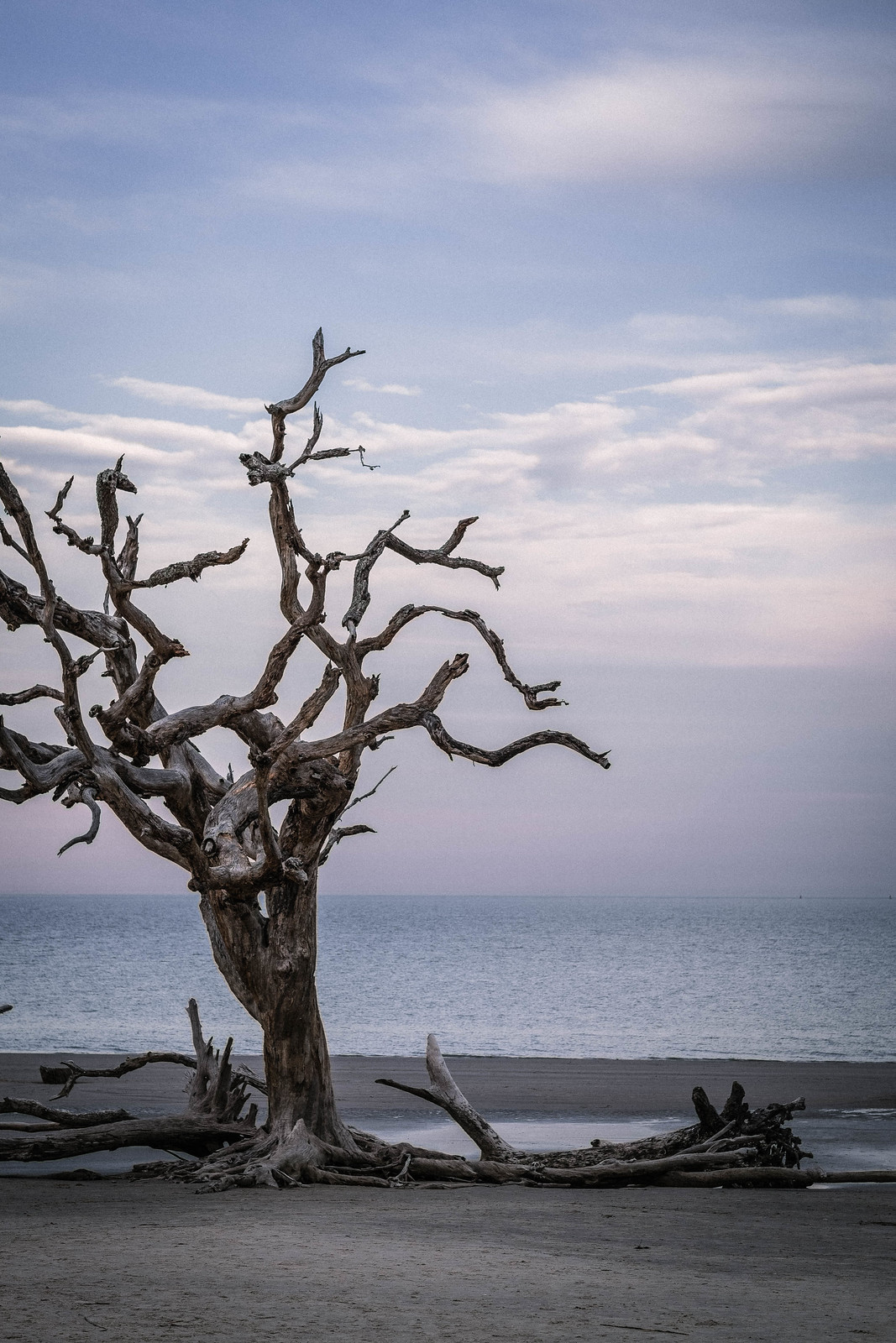 Jekyll Island_DSF1079