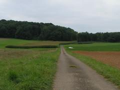 20070903 13050 0710 Jakobus Feld Wald Wiese Weg Hügel