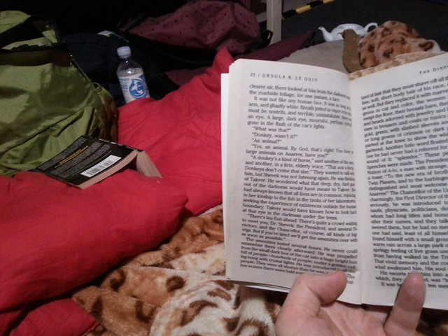 Teahouse, books, big cat blanket
