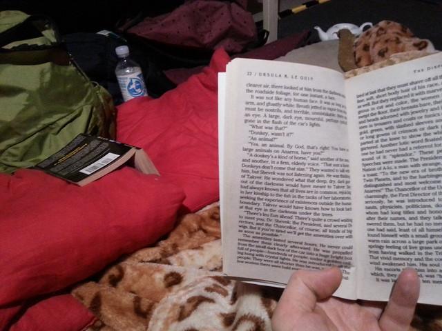 Teahouse, books, big cat blanket