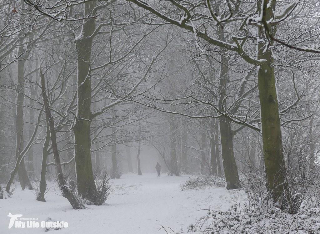 P1130199 - December Snow in Leeds