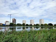 GOC Ally Pally to Kings Cross 061: Woodberry Wetlands