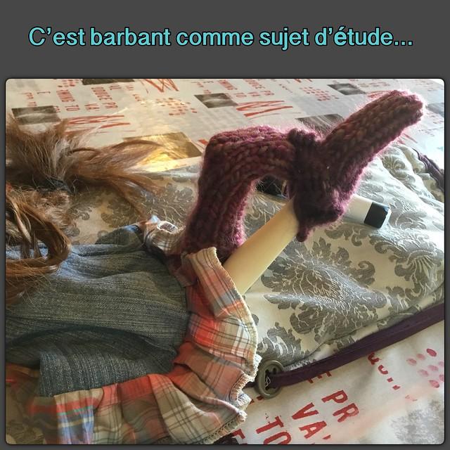 [Agnès et Martial ]les grand breton 21 6 18 - Page 3 39443355674_44cd47ae15_z