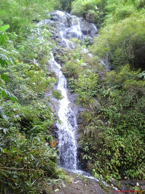 Trailside waterfall