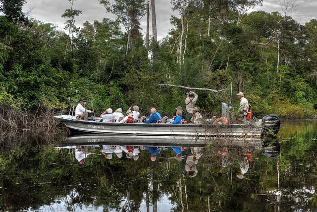 Exploring the Amazon by Skiff