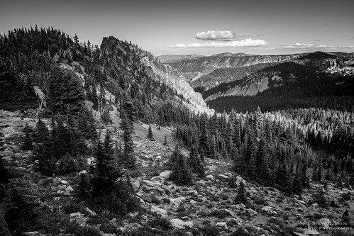 blackandwhite blackandwhitephotography hike hiking landscape landscapephotography nature naturephotography northamerica northwest originalphotographers outdoorphotography outdoors pacificcresttrail pacificnorthwest pct photooftheday photography summer unitedstates usa washington washingtonstate whitepass yakimacounty