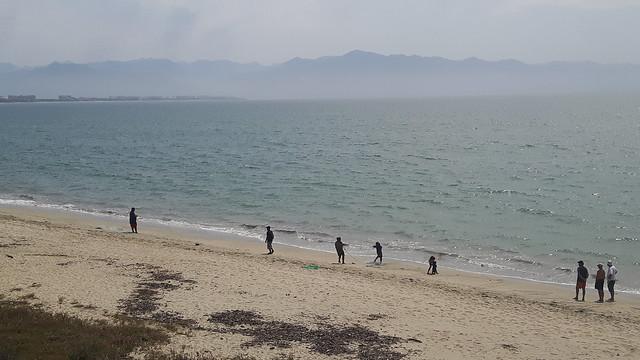 fishermen pulling in a net along the beach