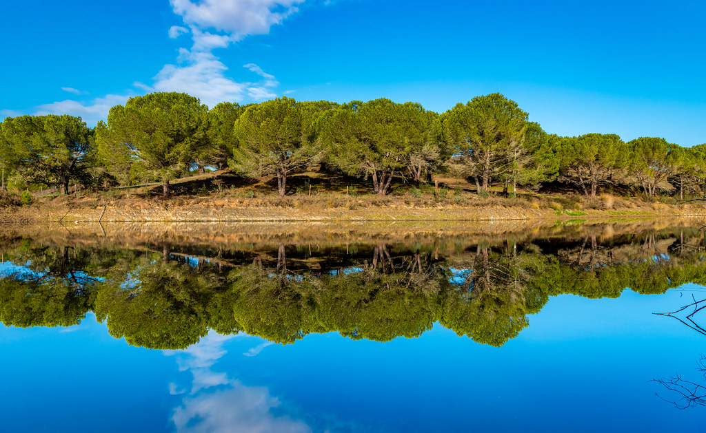 Barragem Reflection