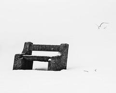 Bluff City Cemetery Snow ©2018 Lauri Novak