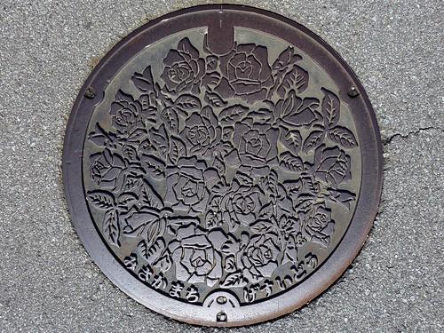 Misaka Yamanashi, manhole cover (山梨県御坂町のマンホール)