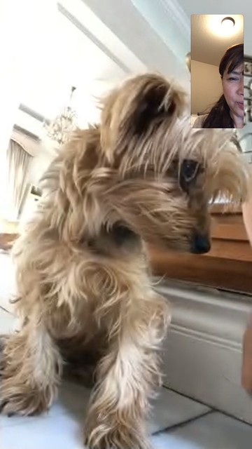 Facetime with Twinkle