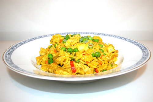 44 - Curry rice with chicken - Side view / Curryreis mit Huhn - Seitenansicht