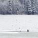 Sonntagsspaziergang mit Hund by zeh.hah.es.