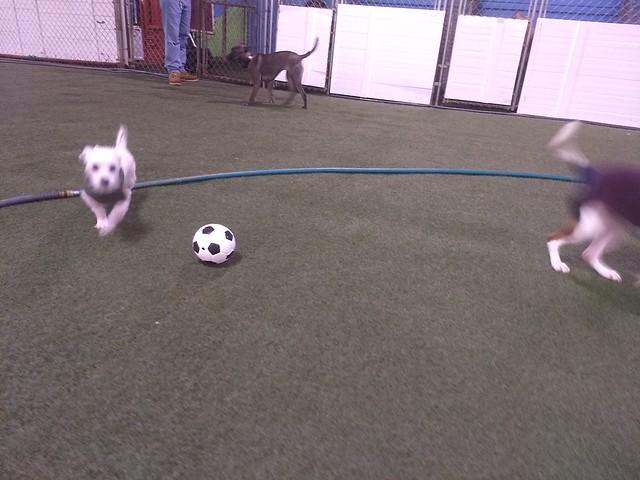 01/30/18 Soccer Play! :)
