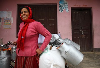 Nepalese dairy farmer at her milk cooperative