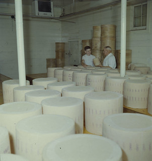 The cheese curing room, Harbour Factory, Ontario / Salle d'affinage du fromage, fromagerie Harbour (Ontario)