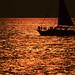 Sailing copper seas
