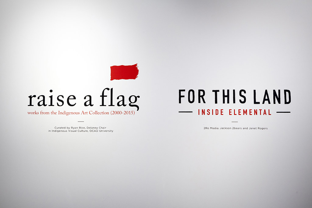 raise a flag: works from the Indigenous Art Collection (2000-2015)