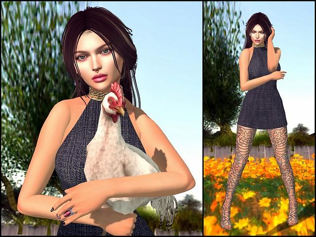 VerucaVee had a Chicken