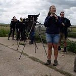 Project Godwit team observe birds after release WWT 2017