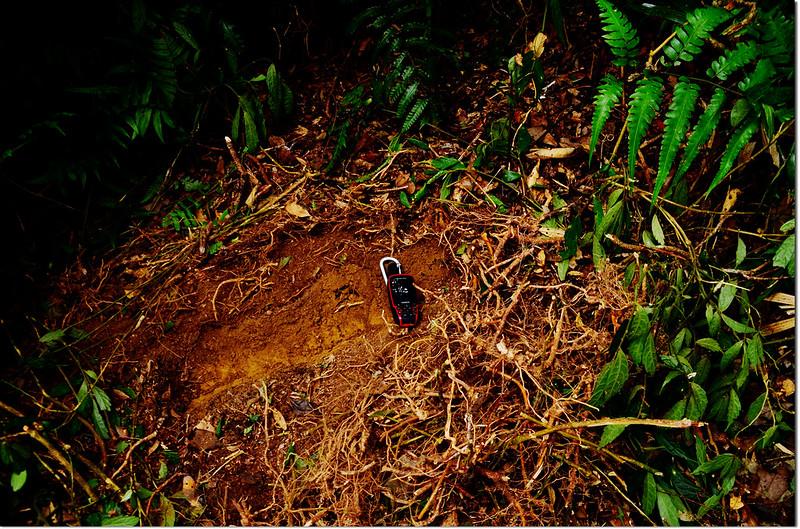 北里龍山補近(18)森林三角點發現現場