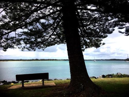 Bella Luna on a public mooring. Port Macquarie.