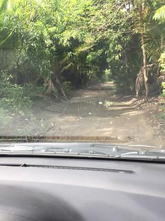 131 - Feldweg nahe Montellano 2
