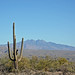 Four Peaks, AZ