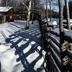 fenced snowy shadows