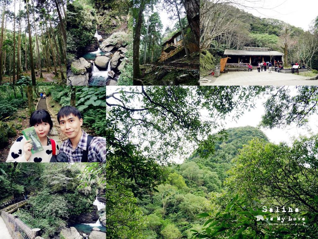 三峽一日遊景點推薦滿月圓森林遊樂區