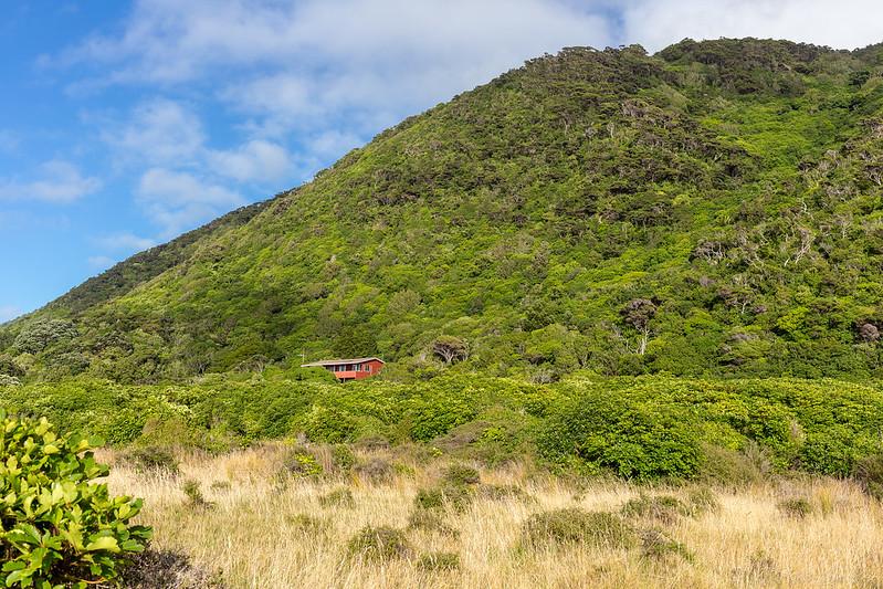 Arriving on Kapiti Island