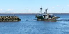 Pêche à contre-courant - Photo of Saint-Christoly-Médoc