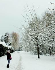 Dernière photo de neige