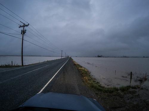 Skagit Farmland Flooding-4