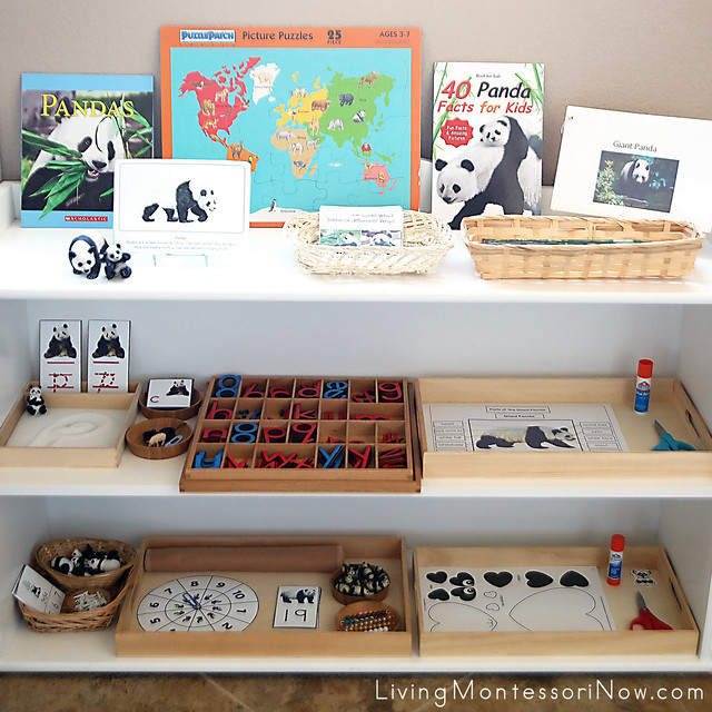 Montessori Shelves with Panda-Themed Activities