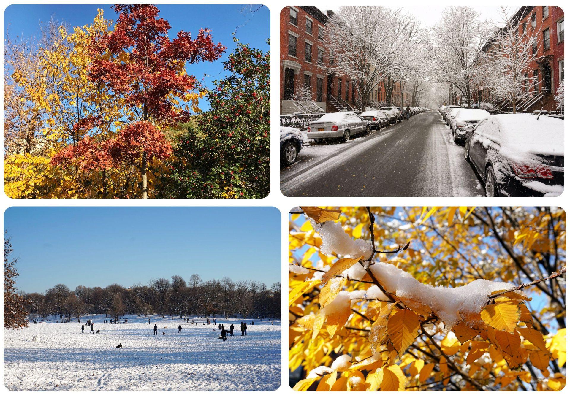 New York December Weather