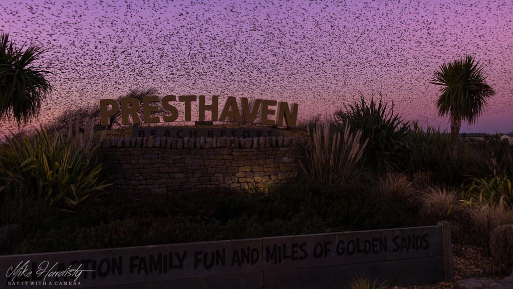 Presthaven